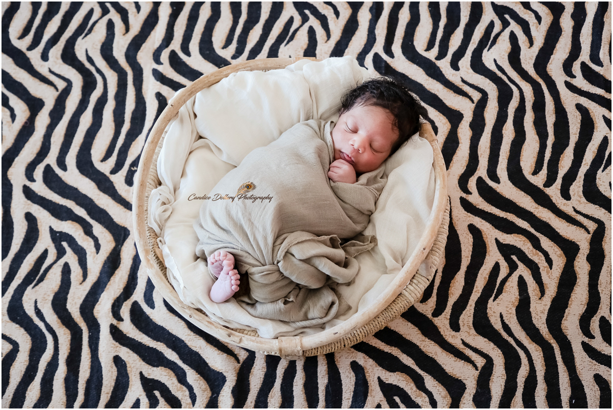 newborn-phemelo-candice-dollery-photography_1863