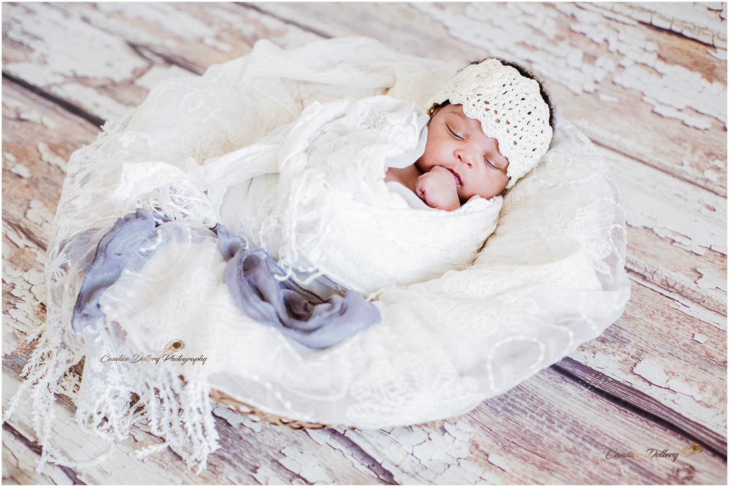 Newborn - Candice Dollery Photography_001