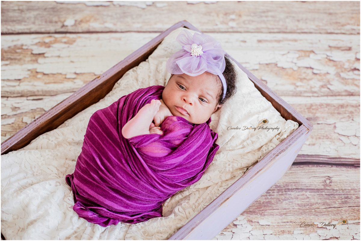 Newborn - Candice Dollery Photography_011