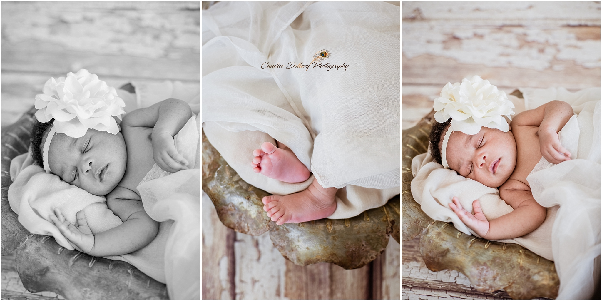 Newborn - Candice Dollery Photography_036