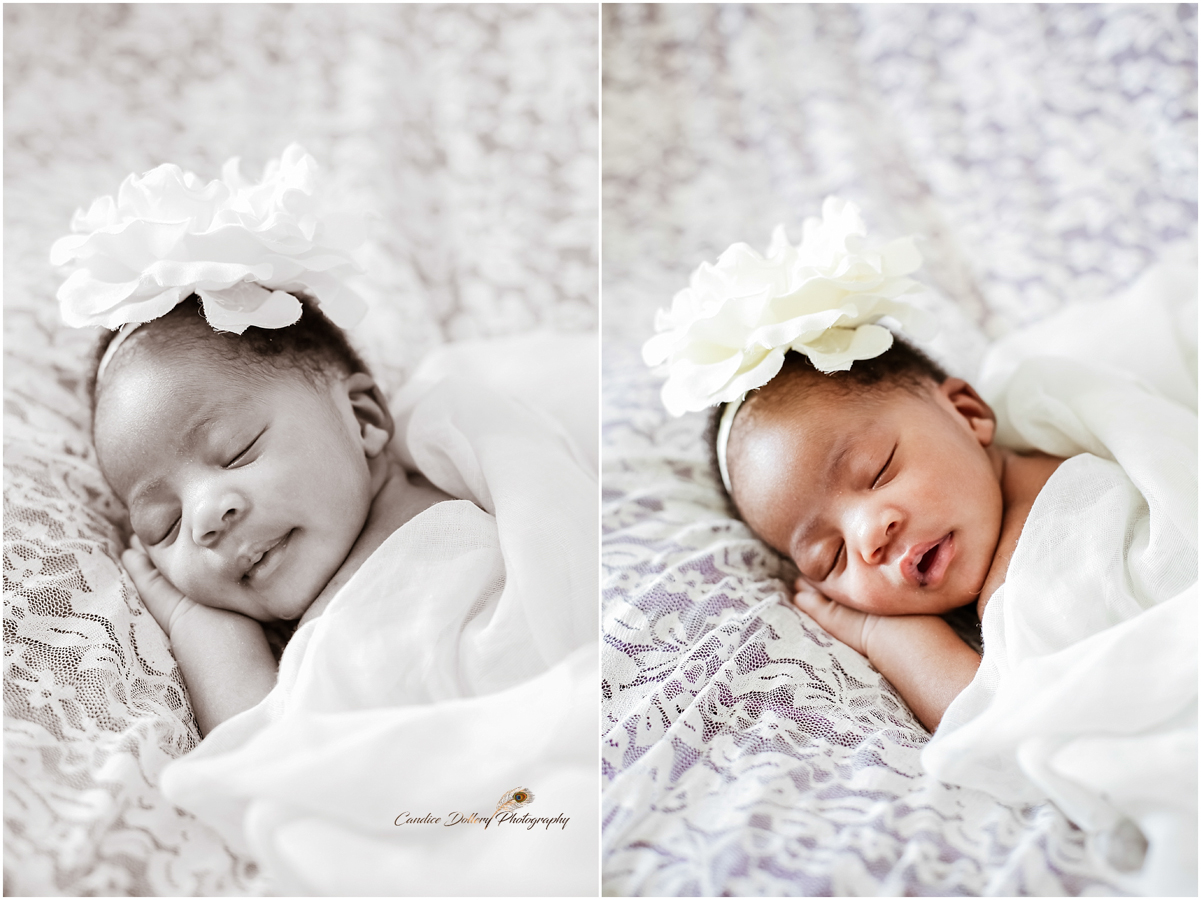 Newborn - Candice Dollery Photography_1048