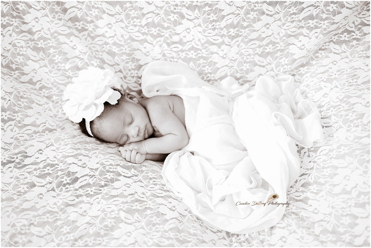 Newborn - Candice Dollery Photography_1057