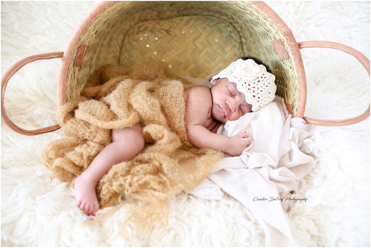 Newborn - Candice Dollery Photography_1064